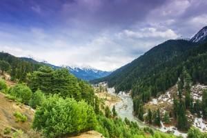 Lidder River flowing through Lavender park in Pahalgam Valley - Pahalgam , Kashmir - India.
