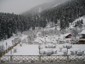 Manali-Snow Fall