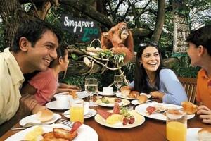 singapore-zoo1