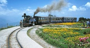 Darjeeling-Toy-Train-1