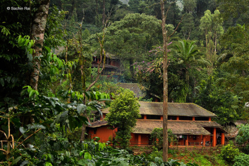 coorg-gallery13