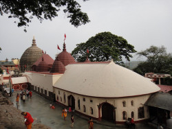 The Kamakhya Temple is a shakti temple situated on the Nilachal Hill in western part of Guwahati city in Assam, India. It is the main temple in a complex of individual temples dedicated to different forms of the mother goddess as the Dasa Mahavidya, including Bhuvaneshvari, Bagalamukhi, Chinnamasta, Tripura Sundari and Tara. It is an important pilgrimage destination for general Hindu and Tantric worshipers.