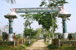 kaziranga_park