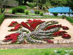 Hakagla garden