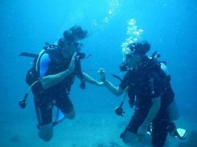 ocean-tribe-scuba-diving