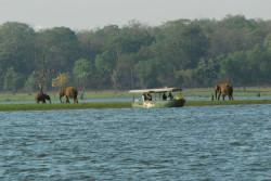 jungle lodges in karnataka