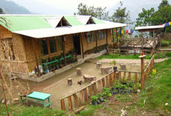 darap-village
